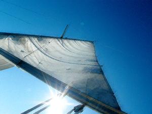 Sailup_s_2